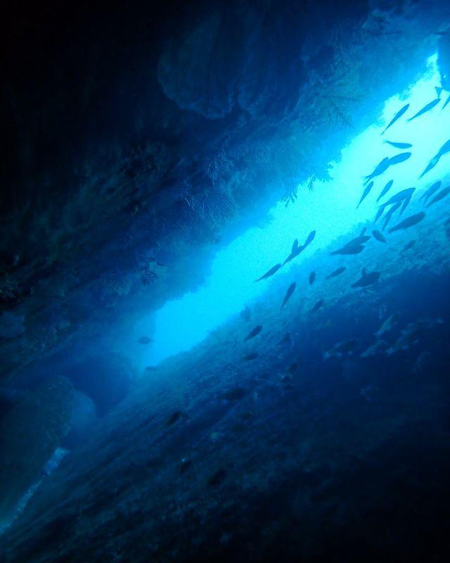洞窟からチラリ☆光が差し込むとすっごく綺麗です